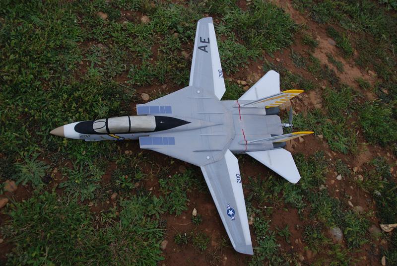 F-14 Tomcat - hélice propulsive DSC_6680