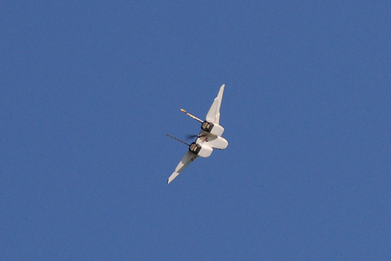 F-14 Tomcat - hélice propulsive DSC_6708